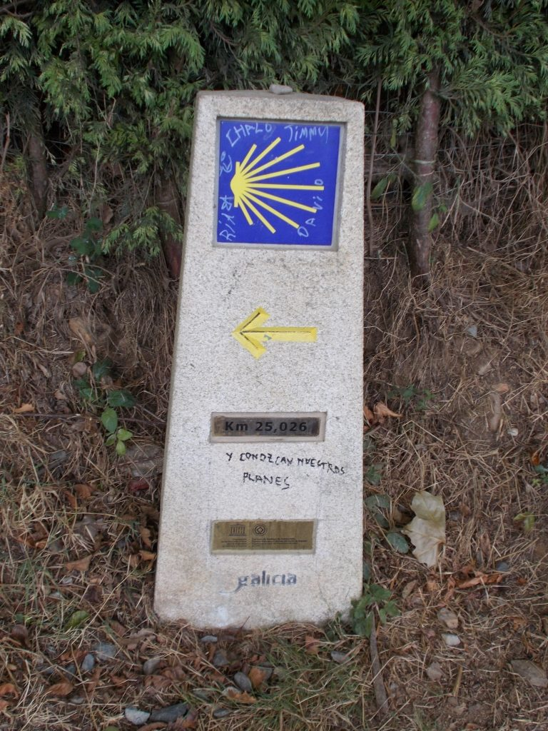 081jakobsweg-2018dscn0981-768x1024 Way of St. James Camino Frances 2018 (Spain)